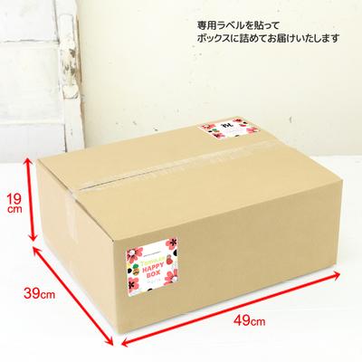 おとくがいっぱい!HAPPY BOX−春夏アイテム−